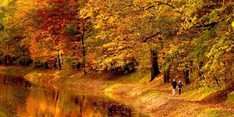 delaware-canal-state-park-fall-runners-976vp
